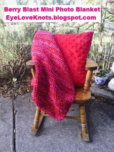 Berry Blast Mini Photo Blanket ~ Alexandra Richards - EyeLoveKnots