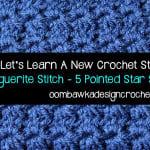 Marguerite Stitch/Star Stitch ~ Oombawka Design