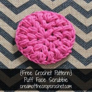 Puff Face Scrubbie ~ Cream Of The Crop Crochet