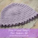 Picot Newborn Hat ~ Cream Of The Crop Crochet