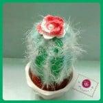 Icy Cactus Amigurumi ~ Maz Kwok's Designs