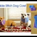 Cable Stitch Dog Cowl ~ Sara Sach – Posh Pooch Designs