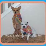 Pennant Dog Bandanna ~ Sara Sach – Posh Pooch Designs