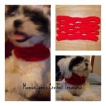 Easy Breezy Cowl for Pup ~ Manda Proell - MandaLynn's Crochet Treasures