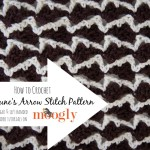 Neptune's Arrow Stitch Pattern ~ Moogly