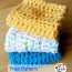 Pretty N Easy Dish Cloth ~ Snappy Tots