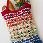Rainbow Runner Tote Bag ~ Moogly