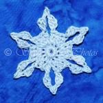 Garden 20 Snowflake ~ Snowcatcher