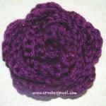 Pretty Rose ~ Amy – Crochet Jewel