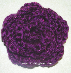 Pretty Rose ~ Amy - Crochet Jewel