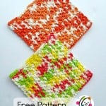 Sturdy and Purdy Wash Cloth ~ Snappy Tots