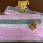 Baby Blanket ~ JustCrochet