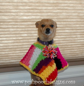 Scrap Happy Dog Poncho ~ Sara Sach - Posh Pooch Designs