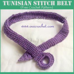 Tunisian Stitch Belt ~ Oui Crochet