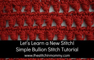 Simple Bullion Stitch Tutorial and Afghan Square ~ The Stitchin' Mommy