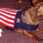 Jennifer's Patriotic Dog Jacket ~ Crochet N More