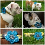 Reflect a Flower Collar ~ Manda Proell - MandaLynn's Crochet Treasures
