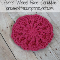 Ferris Wheel Face Scrubbie ~ Cream Of The Crop Crochet