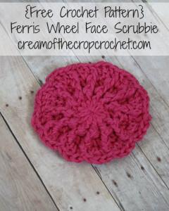 Ferris Wheel Face Scrubbie ~ Cream Of The Crop Crochet