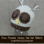 Preemie Sleepy Owl Hat ~ Cream Of The Crop Crochet