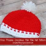 Preemie Christmas Pom Pom Hat ~ Cream Of The Crop Crochet