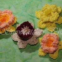 Daffodil ~ Snowcatcher