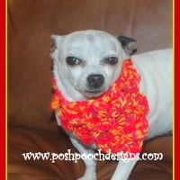 Crocodile Stitch Dog Bandanna ~ Sara Sach - Posh Pooch Designs