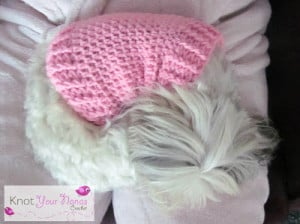 Small Dog Crochet Jumper ~ Knot Your Nana's Crochet