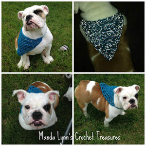 Reflect-a-Danna ~ Manda Proell - MandaLynn's Crochet Treasures