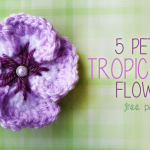 5 Petal Tropical Flower ~ Rebecca Langford - Little Monkeys Crochet