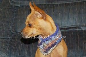 Button Dog Scarf ~ Sara Sach - Posh Pooch Designs