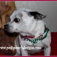 Christmas Candy Dog Cowl ~ Sara Sach - Posh Pooch Designs