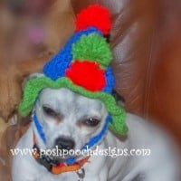 Birthday Dog Hat ~ Sara Sach - Posh Pooch Designs