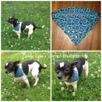 Tiny-Danna ~ Manda Proell - MandaLynn's Crochet Treasures