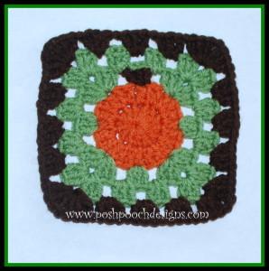 Sweet Little Pumpkin Square ~ Sara Sach - Posh Pooch Designs