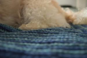 Mitered Square Pet Blanket ~ Underground Crafter - Oombawka Design