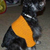 Sawyer's Shrug ~ Crochet N More