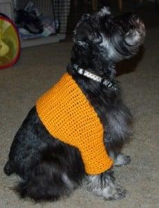 Sawyer's Shrug ~ Crochet N More