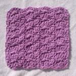 A Shell of a Washcloth ~ Stitch11