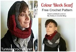 Tunisian Colour Block Scarf ~ Nicole Cormier - My Hobby is Crochet