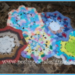 Easy Does It Wash Cloth ~ Sara Sach -Posh Pooch Designs