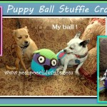 Puppy Ball Stuffie Dog Toy ~ Sara Sach - Posh Pooch Designs