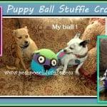 Puppy Ball Stuffie Dog Toy ~ Sara Sach – Posh Pooch Designs