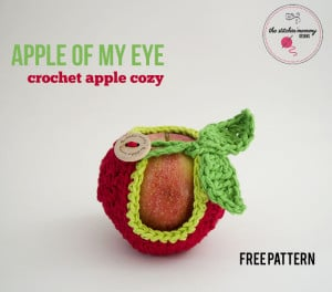 Apple Of My Eye Apple Cozy ~ The Stitchin' Mommy