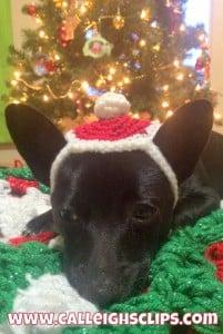 Decorative Christmas Headpiece ~ Elisabeth Spivey - Calleigh's Clips & Crochet Creations