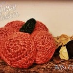 Pretty Pumpkin ~ Tera Kulling - Trifles N Treasures