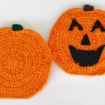 Falling Pumpkin Dishcloth & Hot Pad ~ Aurora Suominen - DragonFlyMomof2 Designs