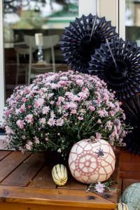 Pumpkin Cover ~ Flax & Twine