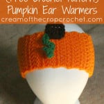 Pumpkin Ear Warmers ~ Cream Of The Crop Crochet