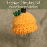 Preemie/Newborn Pumpkin Hats ~ Cream Of The Crop Crochet